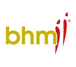 SW Essen - Sponsoren - bhm GmbH